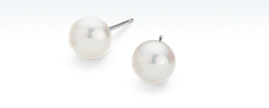 Premier Akoya Cultured Pearl Earrings in 18k White Gold (8-8.5mm)