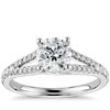 Split Shank Trellis Solitaire Engagement Ring in 14k White Gold