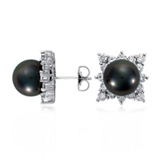 Tahitian Cultured Pearl and Diamond Earrings in 18k White Gold (2 ct. tw.)
